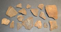A group of 16 x assorted larger shards of rare Early Anglo Saxon Pagan period pottery, Suffolk (L1)